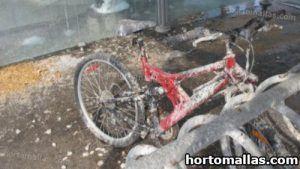 bicicleta llena de heces de aves
