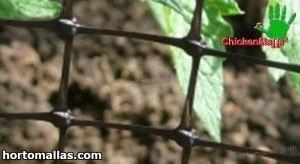 malla para proteger gallineros de depredadores