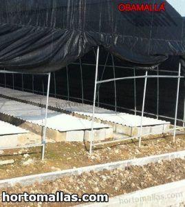 malla sombra usada para proteger cultivos