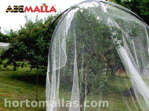 instalación de ABEMALLA® en árboles de frutas