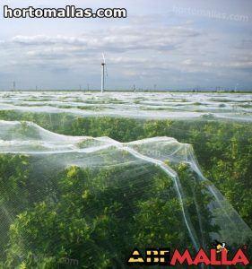 malla anti abejas sobre campo de arboles