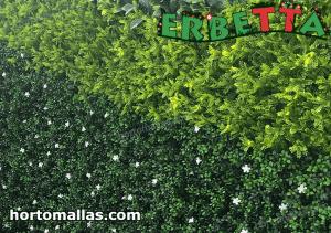 diferentes tipos de arbustos sinteticos de erbetta.