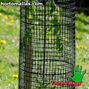 malla colocada para proteger cultivo de Reforestación