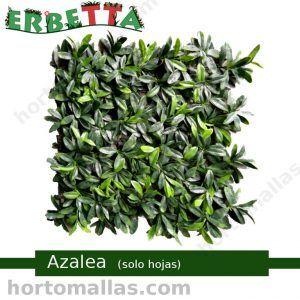 erbetta azalea solo hojas techos verdes sintéticos