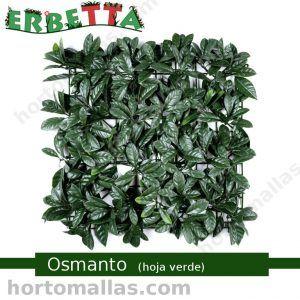 erbetta osmanto hoja verde muros verdes sintéticos