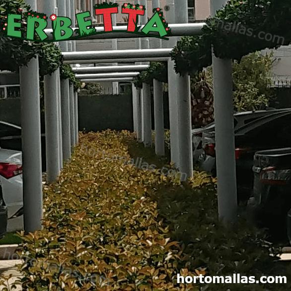Follaje artificial para sombrear estacionamientos