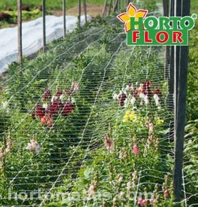 HORTOFLOR malla tutora para flores