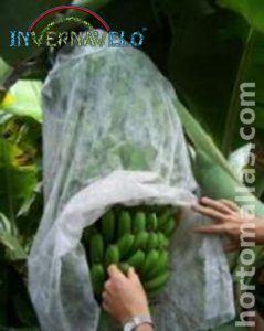 bolsas de bananos INVERNAVELO