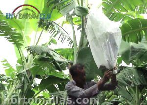 installation of banana bag thermal blanket