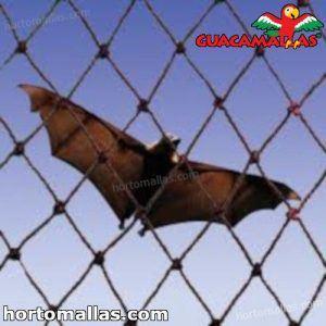anti bat mesh