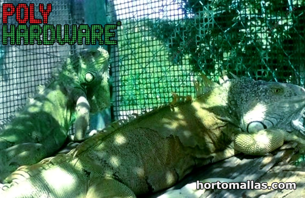 iguana cage made with plastic mesh.
