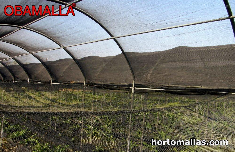 OBAMALLA® shade house