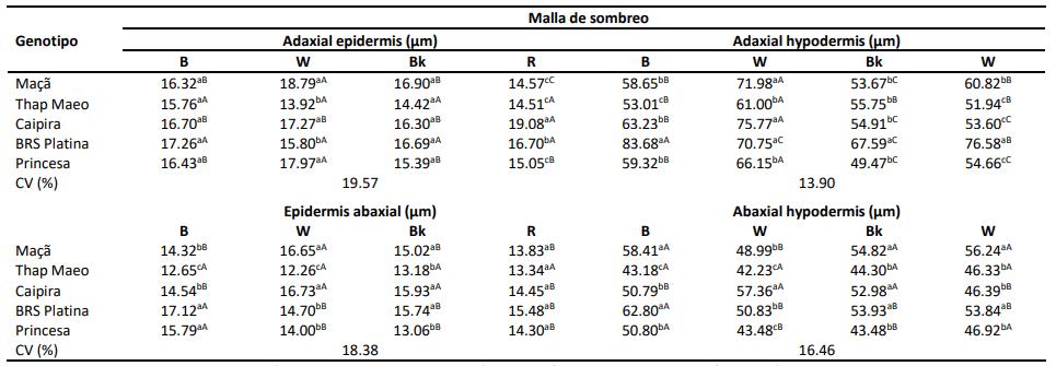 tabla mediciones biométricas diferentes calidades radiacion