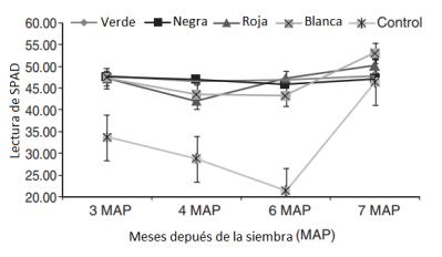 influencia de mallas de sombreo de colores en la clorofila total