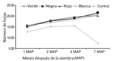 figura 4 sobre influencia de mallas de sombreo de colores en el número de hojas
