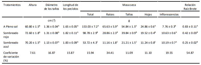 tabla de la malla sombreo de colores, regímenes de luz en plants ocimum selloi