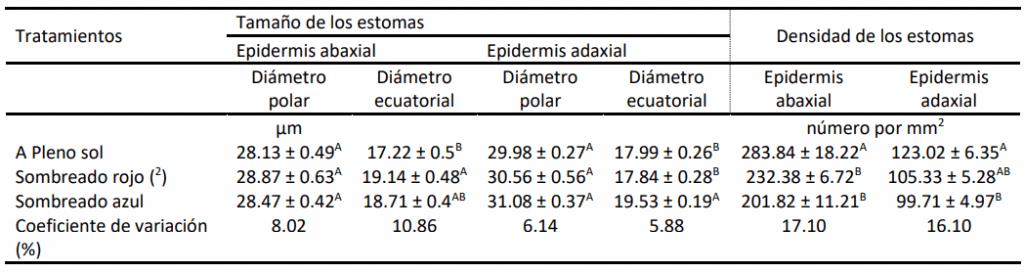 Efectos de diferentes regímenes de luz sobre el tamaño y la densidad de los estomas