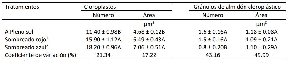 Efectos de diferentes regímenes de luz sobre los cloroplastos y los gránulos de almidón