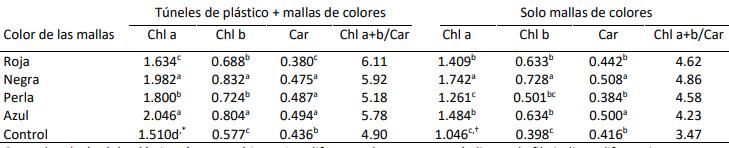 tabla pigmientos fotosintéticos en tomate a la intensidad de luz de colores