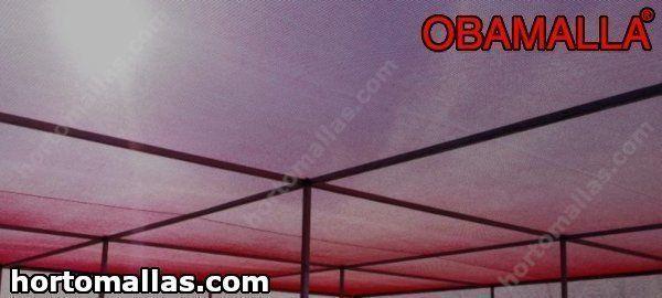 A malha/rede de sombra vermelha registra altas temperaturas.