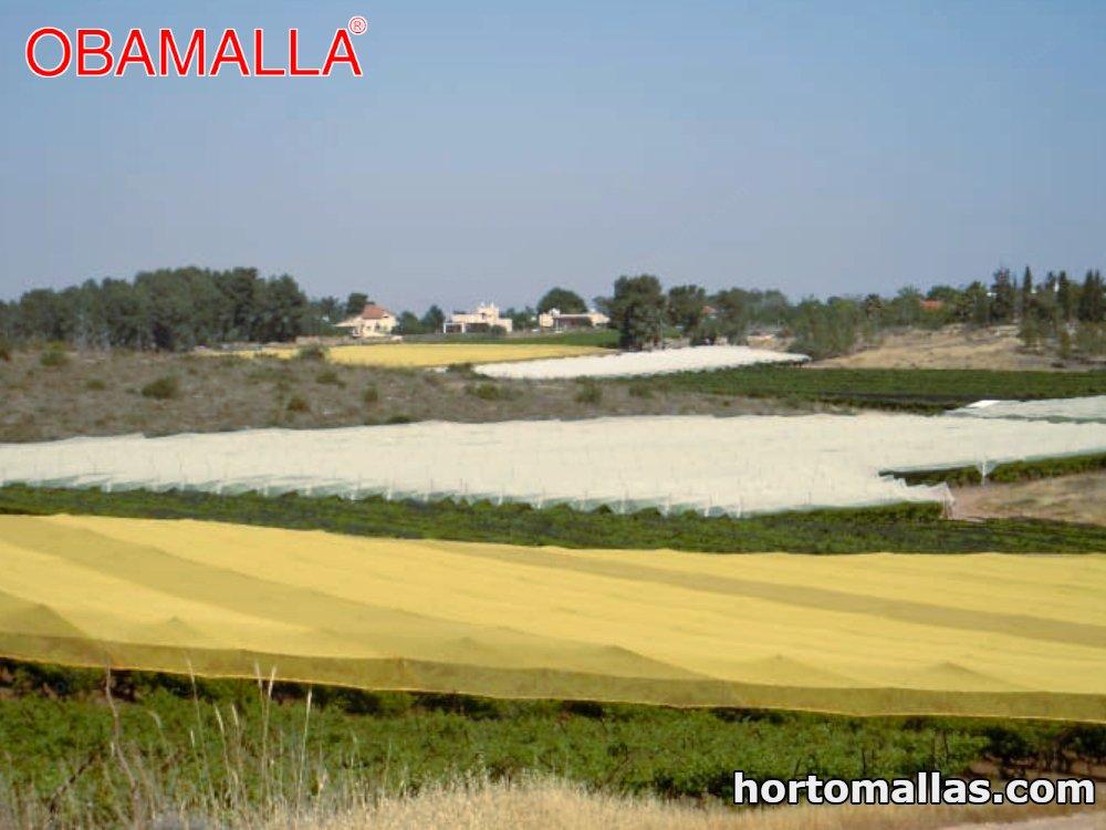 half yellow shade net