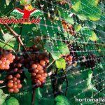 Malla GUACAMALLAS en viñedos