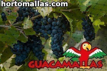 malla guacamallas