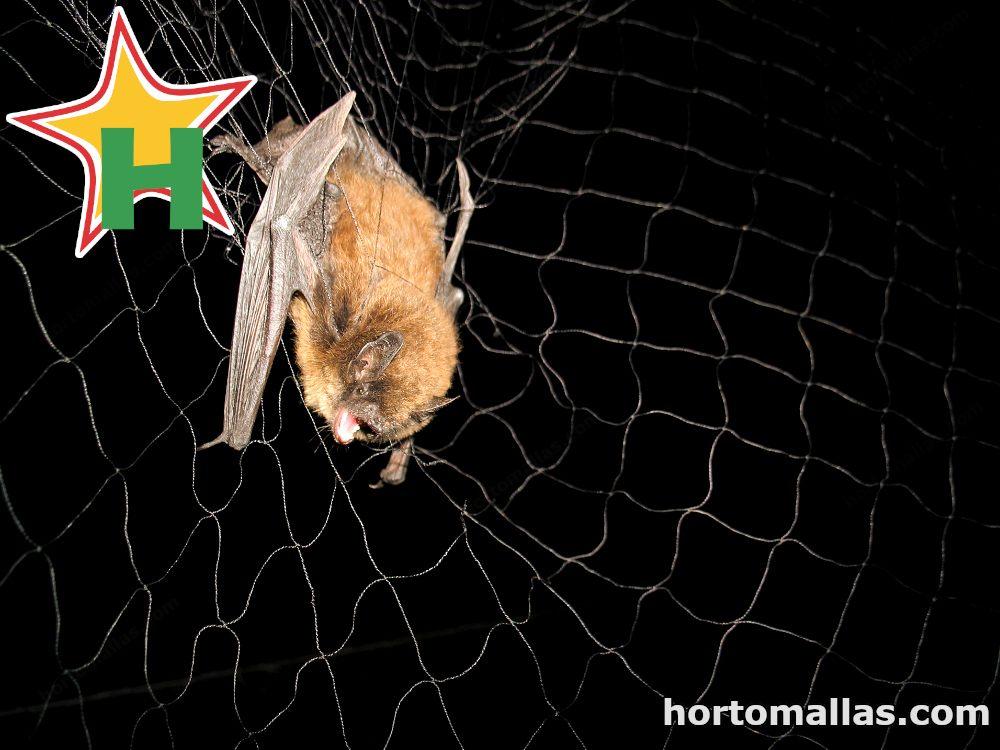 Malla para control de murciélagos