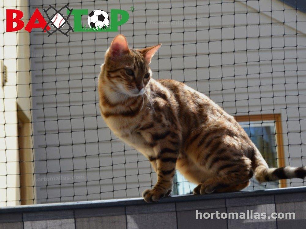 Protección de mascotas con mallas para balcones