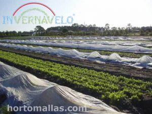 INVERNAVELO® Manta Termica Anti-Heladas