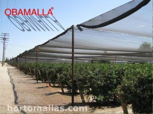 OBAMALLA® Agricultural Half Shade (Nurseries, House Shade, Greenhouses)