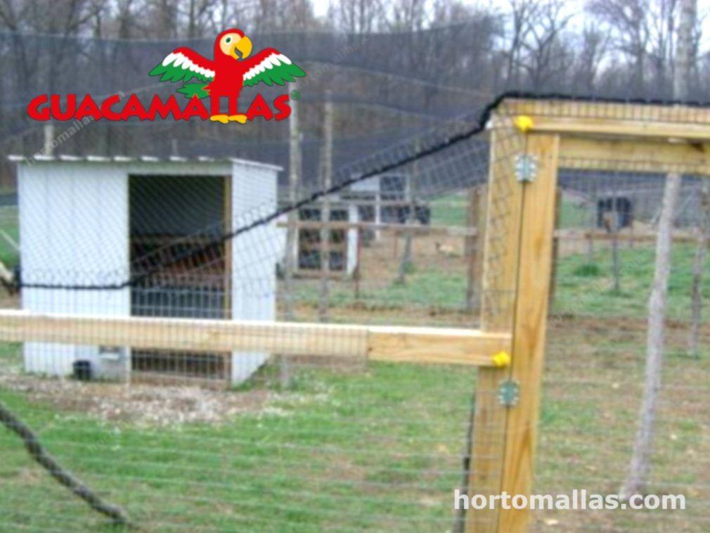 Estructura con malla para control de aves