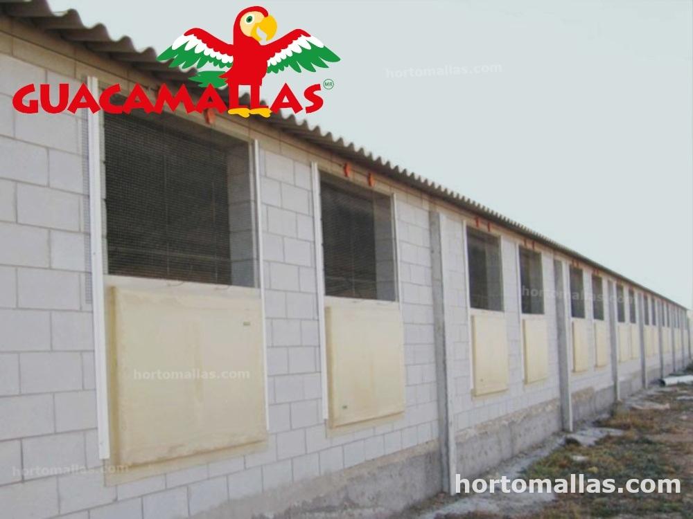 Guacamalla instalada en ventanas