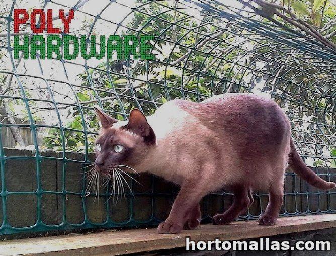 malla hardware instalada para proteger las plantas de un gato