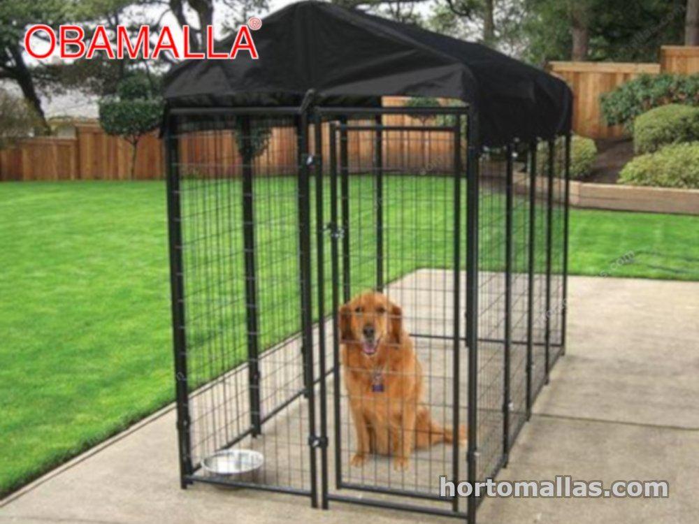 perro bajo una malla OBAMALLA