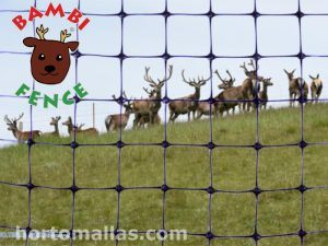 Orchard Protection Netting Against Deer and Hares