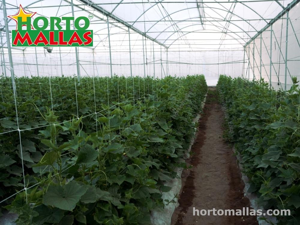 Como escoger la malla tutora adecuada a tus necesidades de cultivo: los tres tipos de mallas y como se usan.
