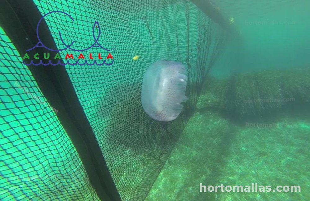 La ACUAMALLA® contra medusas frenando el paso a una de estas