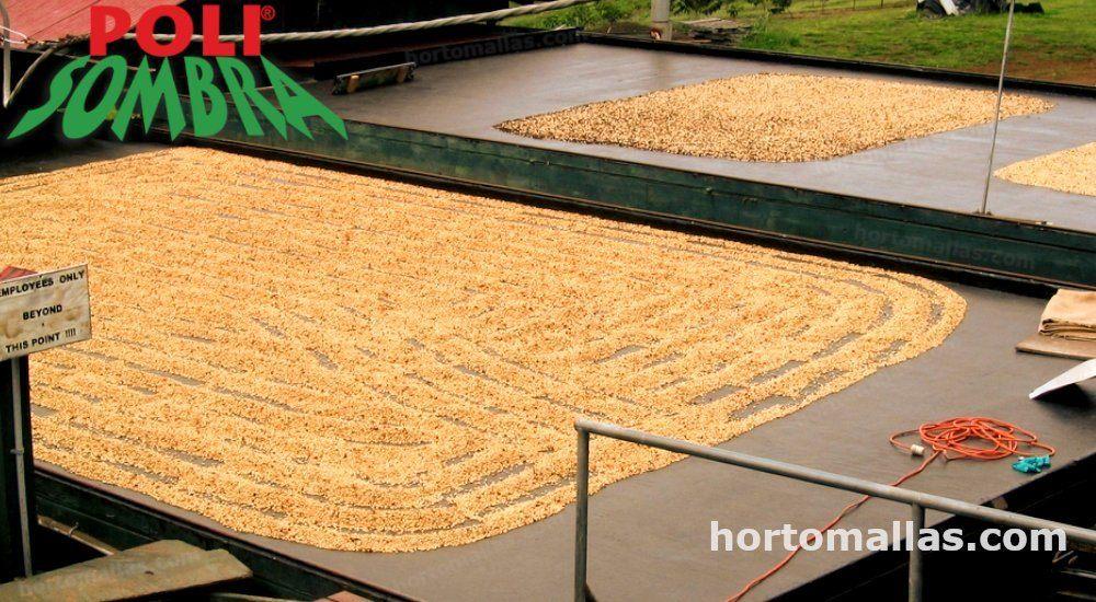 malla POLISOMBRA® para secado de cafe