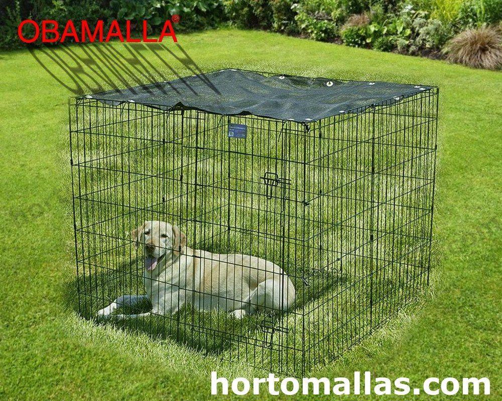 perro en jaula con sombra