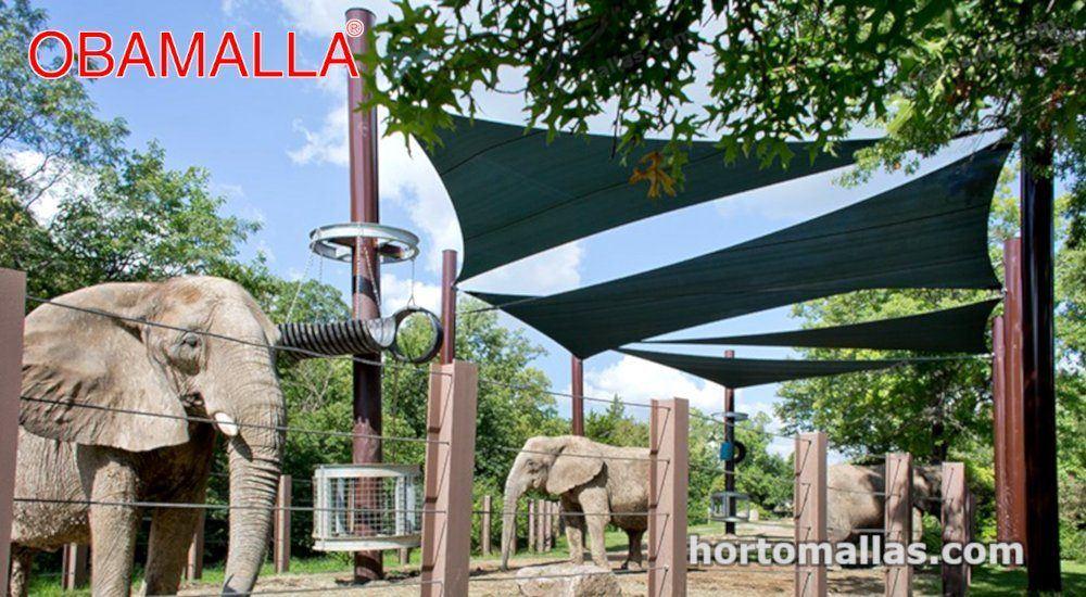 Malla sombreadora para animales  cubriendo a los elefantes en temporada de verano