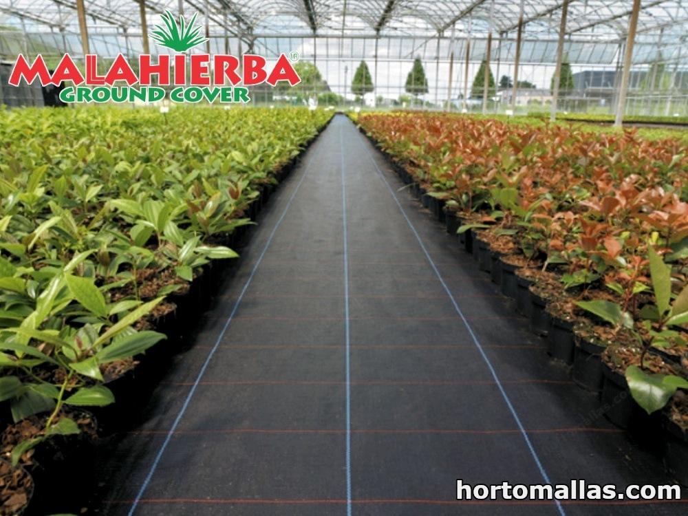 invernadero usando la tela ground cover