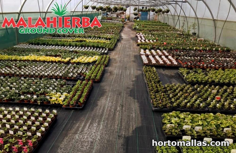 campo de cultivo con MALAHIERBA® ground cover