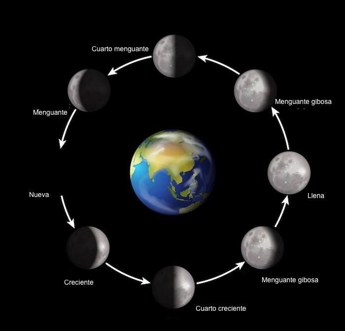 La luna cambia cada tiempo dado y se le conoce las fases lunares.