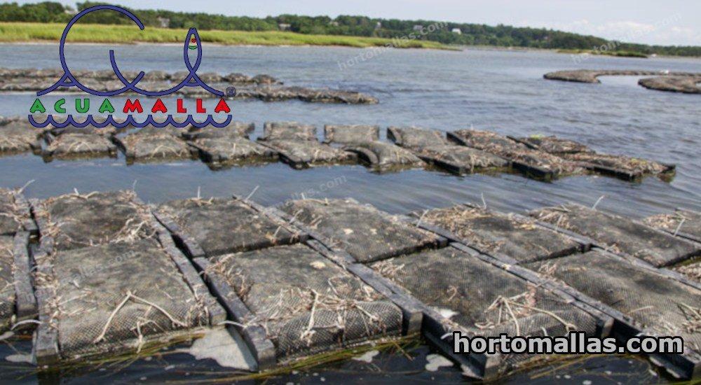 Red para cultivo de peces en jaulas