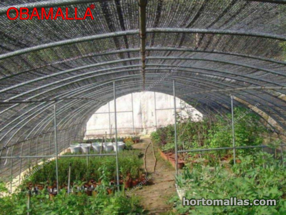 malla sombreadora  sobre cultivos