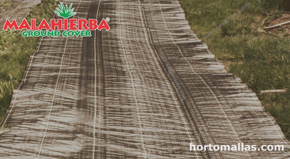 cultivo protegido con tejido ground-cover