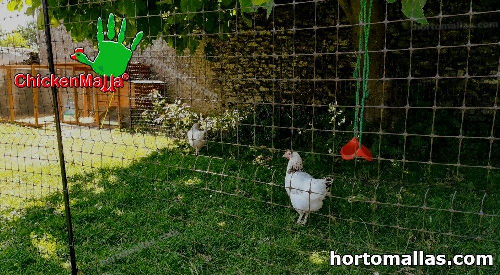 Chickenmalla para áreas de crianza y engorda de aves tela gallinera.
