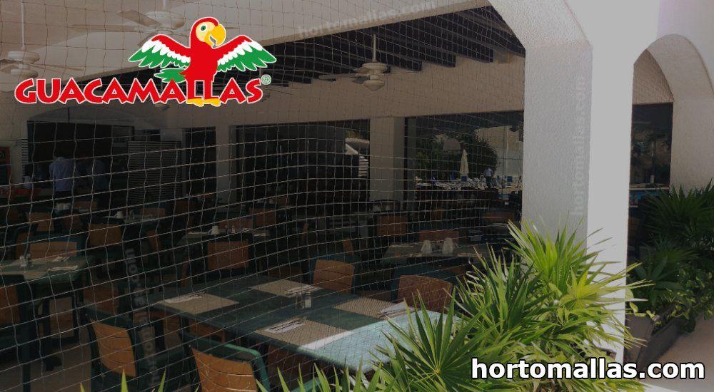 Restaurante con protección de red anti-pájaros