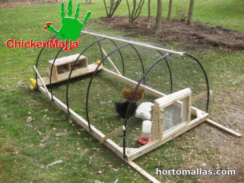chickenmalla puedes ponerla en un buen lugar que quieras proteger